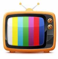 WTF: Watch TV Fun